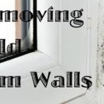 How to Get Rid of Household Mold